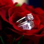 rose-rings-t